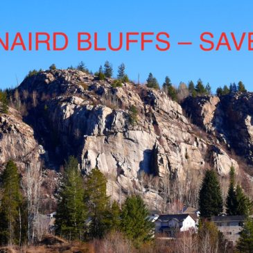 Kinnaird Bluffs Still Needs Saving!